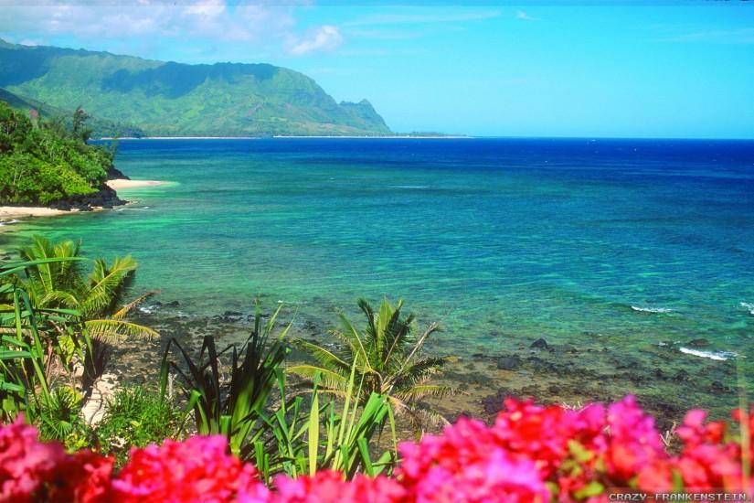 beautiful hawaii wallpaper 1920x1200 4k