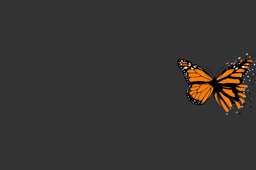 1920x1200 orange and black butterfly with simple grey background