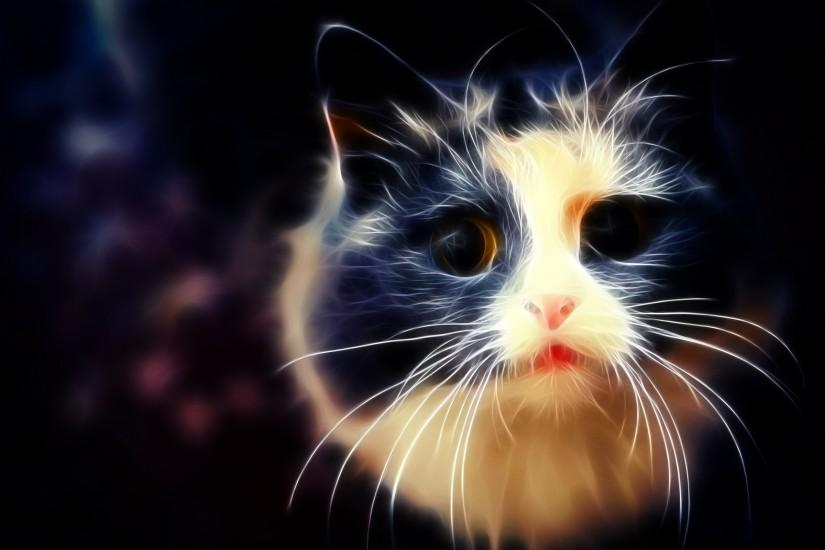 ... White and Black Cat Wallpaper by Ghostkyller