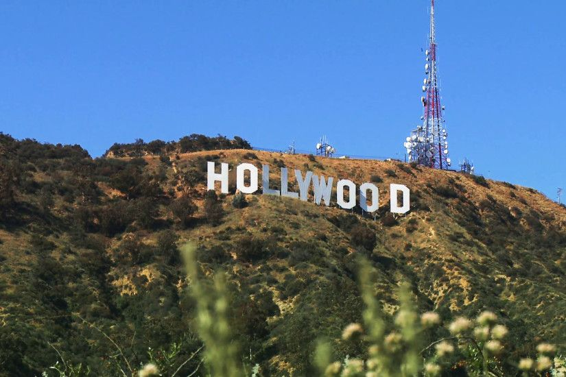 hollywood sign wallpaper #884784