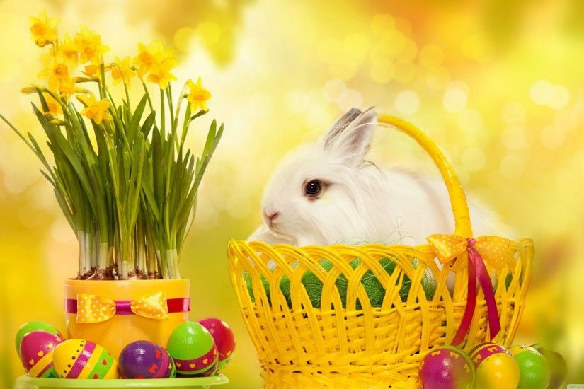 1920x1080 HD Bunnies And Easter Wallpapers Desktop Backgrounds | Funmole
