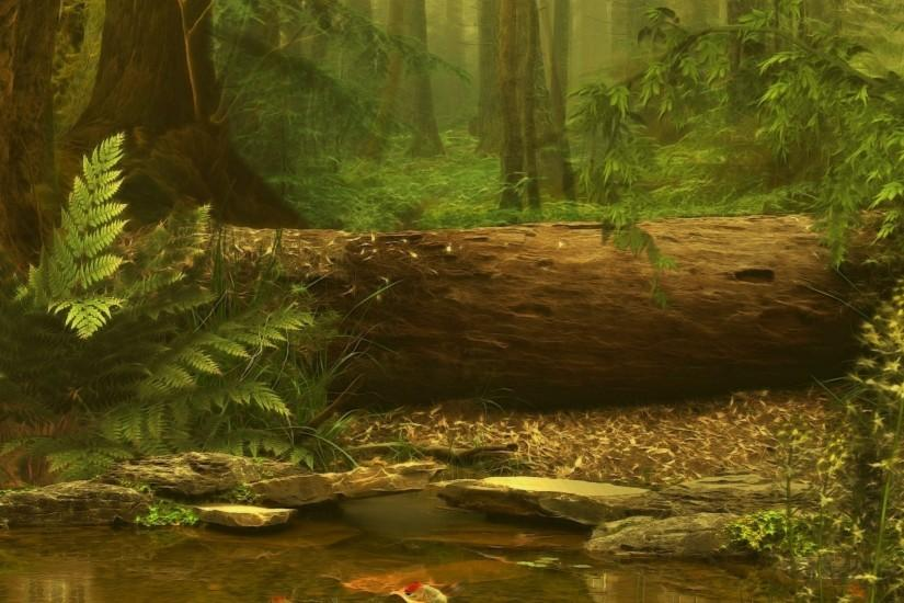 free forest background 2560x1440 hd for mobile
