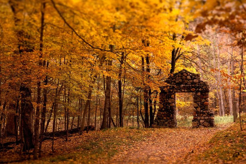 wallpaperstop com wallpapers nature wallpapers autumn wallpapers cool .