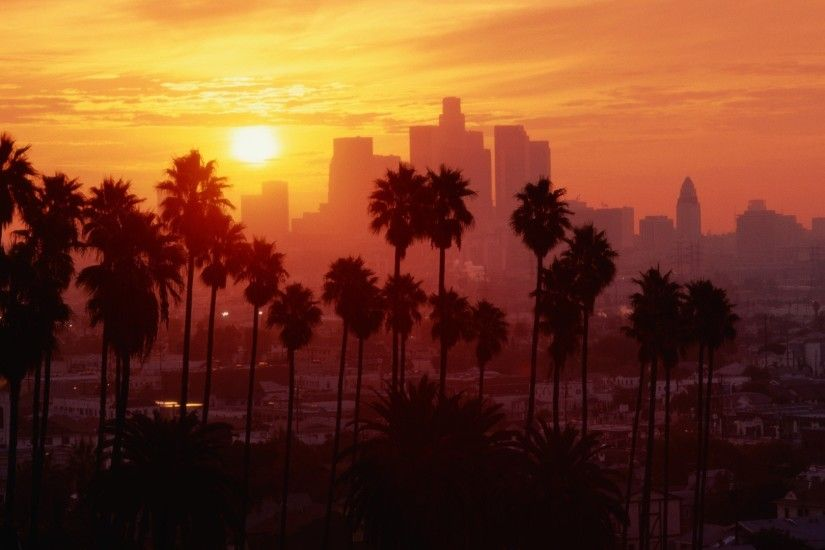 Los Angeles, Sunset, Palm trees Wallpapers HD / Desktop and Mobile  Backgrounds