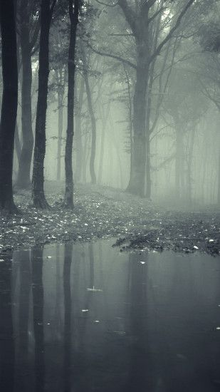 Horror Misty Dark Forest Android Wallpaper ...