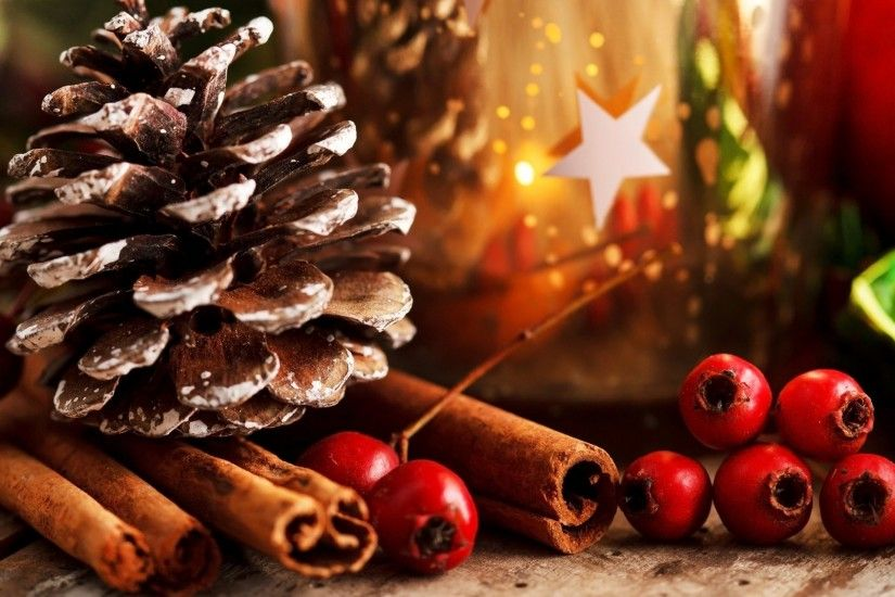 bump cinnamon sticks red berries holly leaves scenery holiday christmas new  year new year christmas