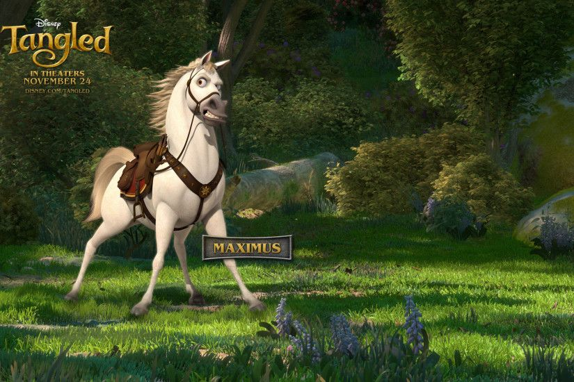Maximus the Horse from Disney's Tangled wallpaper - Click picture for high  resolution HD wallpaper