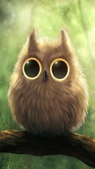 Cute Owl Big Eyes iPhone 6 Plus HD Wallpaper ...