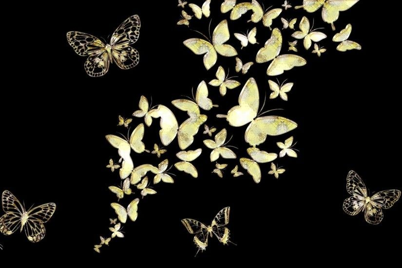 Black Butterfly Background 59 Image