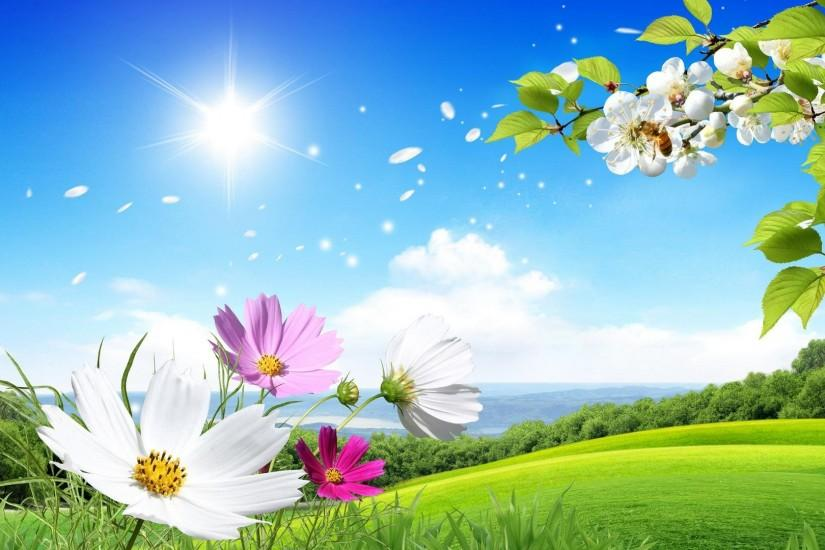 1920x1080 beautiful Summer and flowers scenery wallpaper