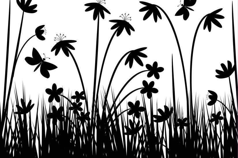 Black and White field flowers