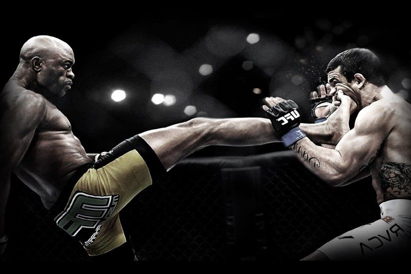 1920x1080 Category : Mixed Wallpapers » MMA Awsome Kick -1920x1080 px