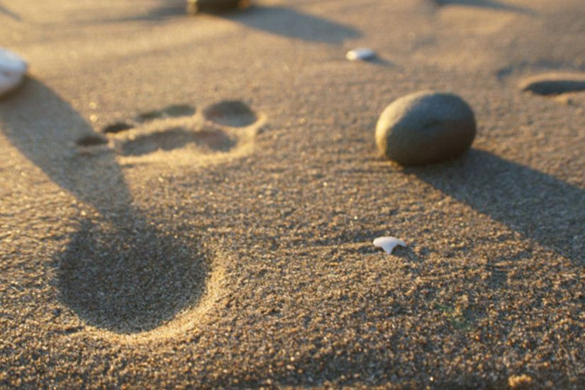 Footprints In The Sand Photograph by Andreas Thust ...
