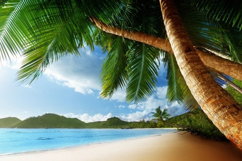 1920x1080 Chill Out Beach Palm Trees