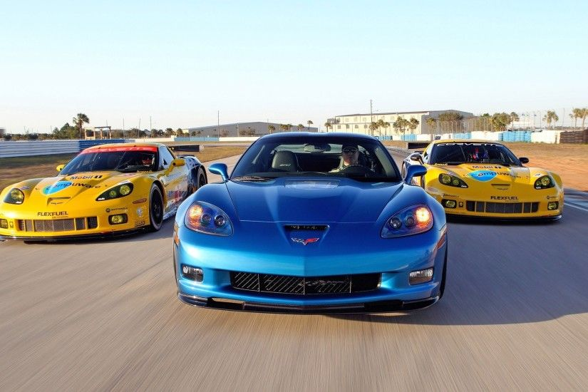 2010 Corvette Racing Sebring Cars