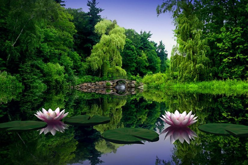 Lotus Flower Lake