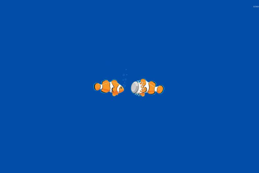 Clownfish wallpaper