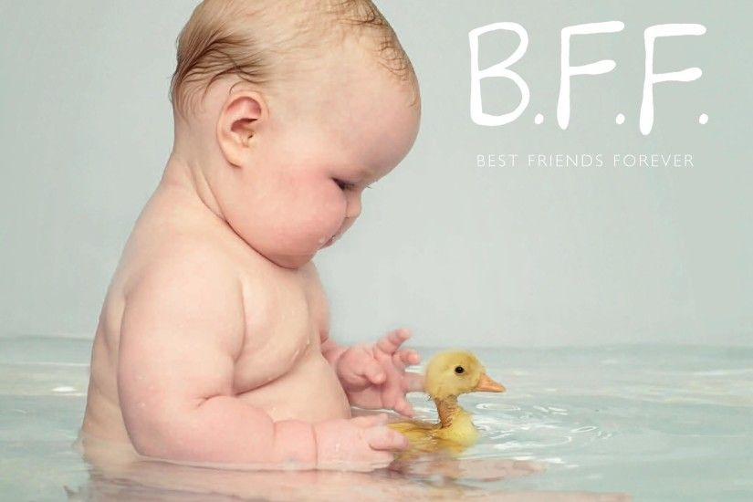 Cute Baby Duck BFF Best Friend Forever HD Wallpaper