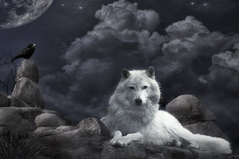 Wolf · HD Wolf Wallpapers ...