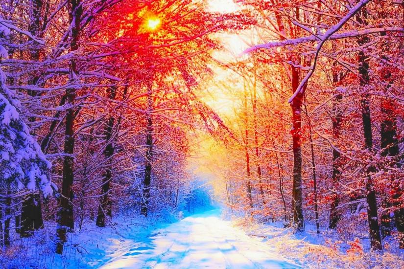 Winter Wallpaper Full HD.