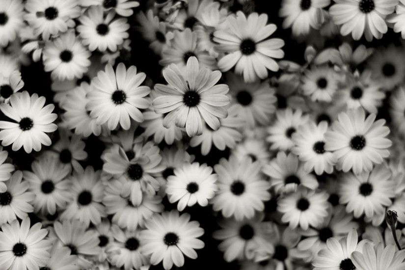 Black & White iPad Background 2