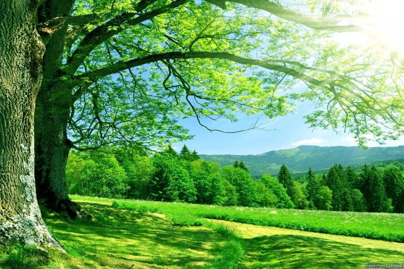 nature backgrounds 2560x1440 windows 7
