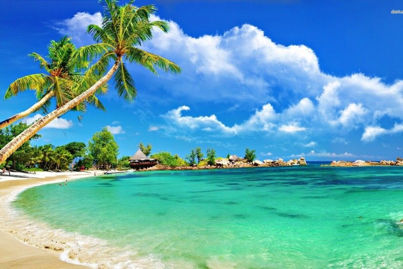 Image for Tropical Beach Wallpaper Hammock Wallpapers For Desktop