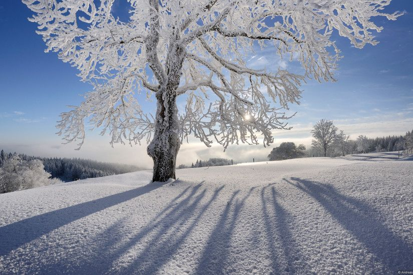 Extraordinary Winter Wallpaper For Computer