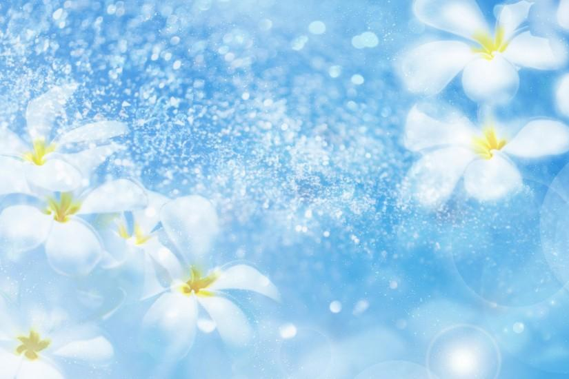 cool flower backgrounds 1920x1200 free download