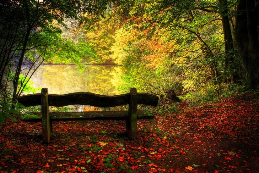 Empty Bench In Fall Scene HD desktop wallpaper : High Definition :  Fullscreen : Mobile : Dual Monitor