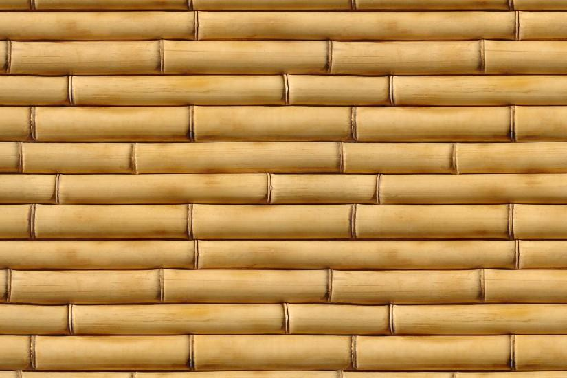 Earth - Bamboo Wallpaper