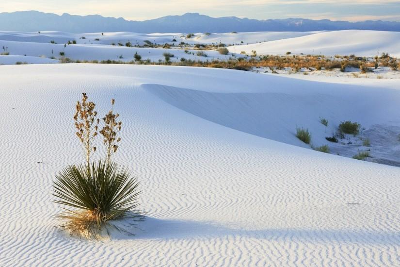 download free desert wallpaper 1920x1080