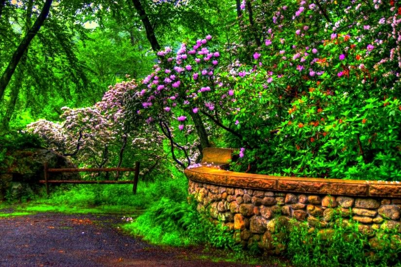 20 Beautiful Spring Wallpaper Dream Spring 2012 - spring beauty Wallpapers  - HD Wallpapers 96881 ...