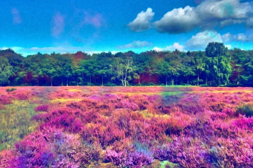 Colorful field near the woods wallpaper