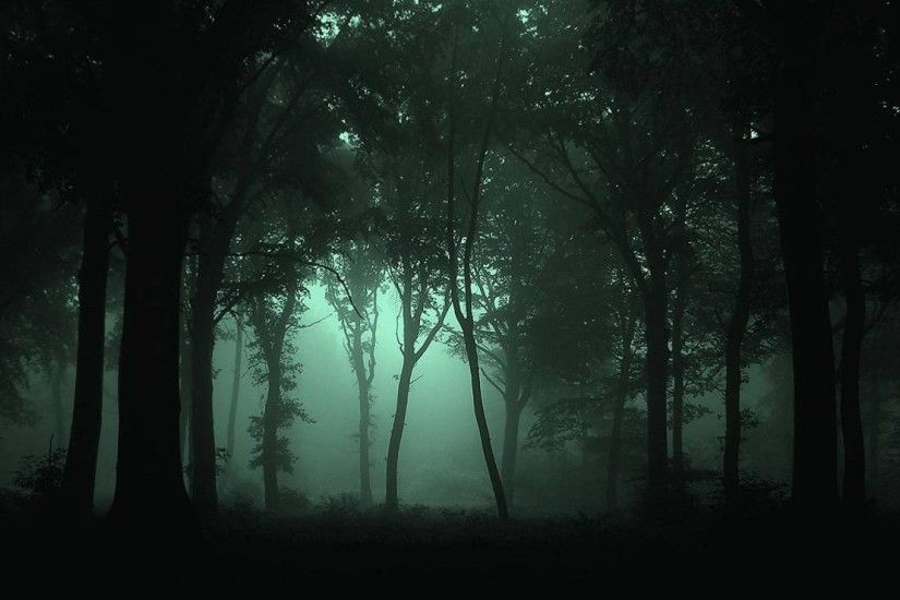 1920x1080 Dark Forest Wallpaper 1080p | Natures Wallpapers | Pinterest | Forest  wallpaper, Dark forest