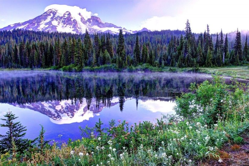 mount rainier national park united states sky spring tree mountain snow  spruce summit lake flower