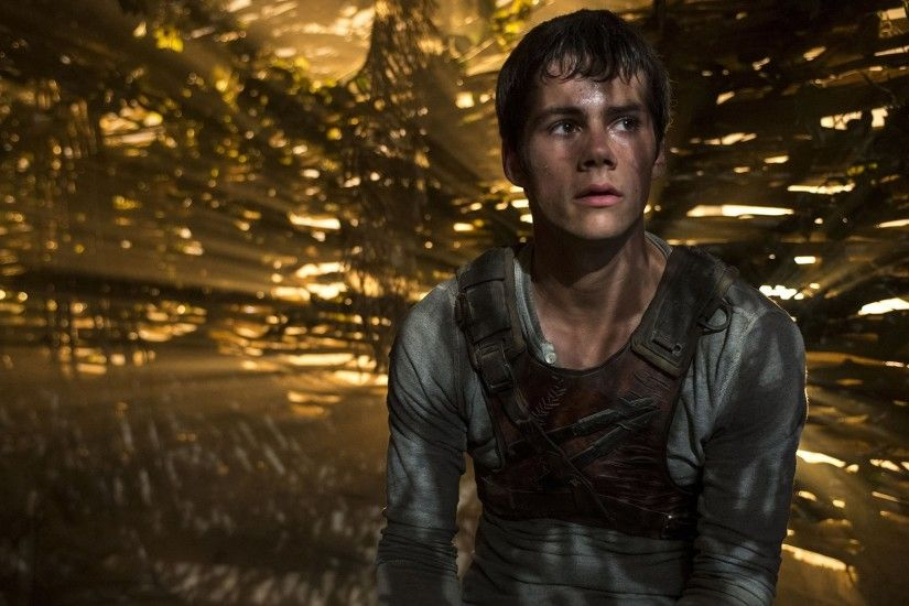 HD Wallpaper | Background ID:555943. 1920x1080 Movie The Maze Runner. 5  Like. Favorite