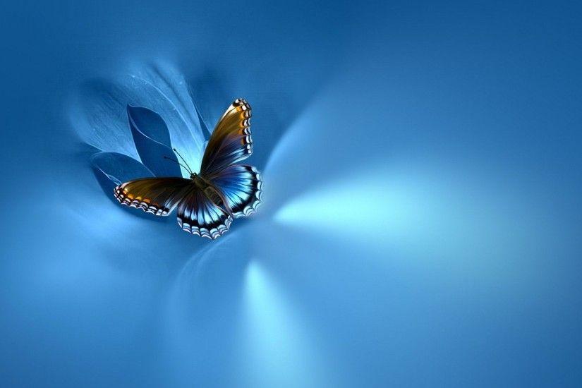 Blue Butterfly Wallpaper ·① WallpaperTag