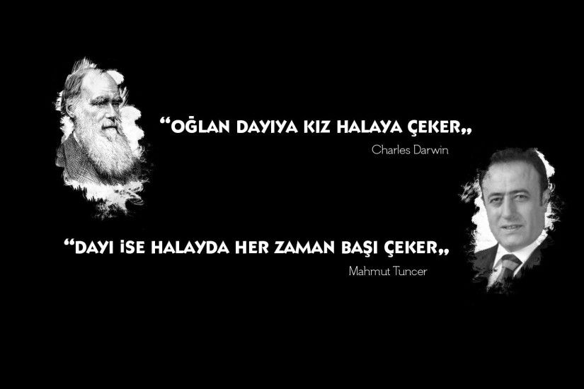 Mahmut Tuncer, Charles Darwin, Halay HD Wallpapers / Desktop and Mobile  Images & Photos