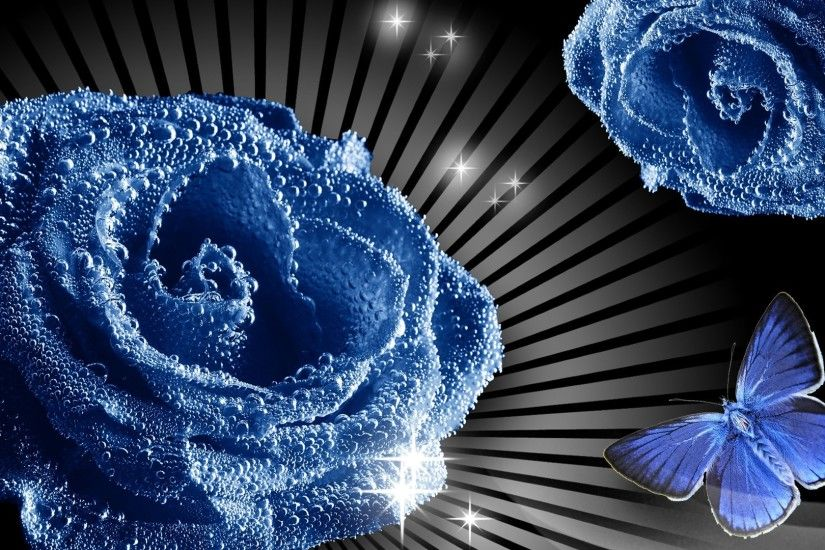 net_Holidays___International_Womens_Day_Blue_rose_and_butterfly__picture_on_March_8_056174_.jpg  (1920×1080) | BLUE ROSES BACKGROUND | Pinterest | Blu…
