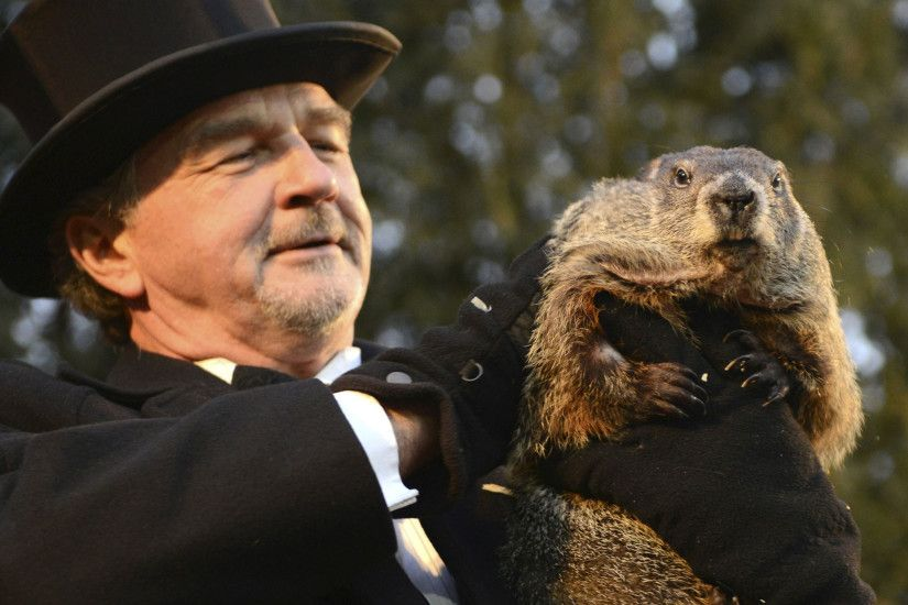 Groundhog Day: Punxsutawney Phil predicts early spring after not seeing  shadow | The Independent