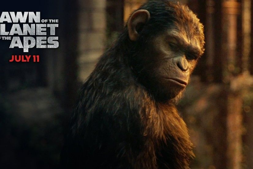 "Dawn of the Planet of the Apes | ""How Many Were There?"" TV Spot [HD] 