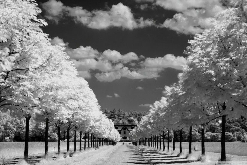 Black And White Photography Desktop Backgrounds (36 Wallpapers) – Adorable  Wallpapers