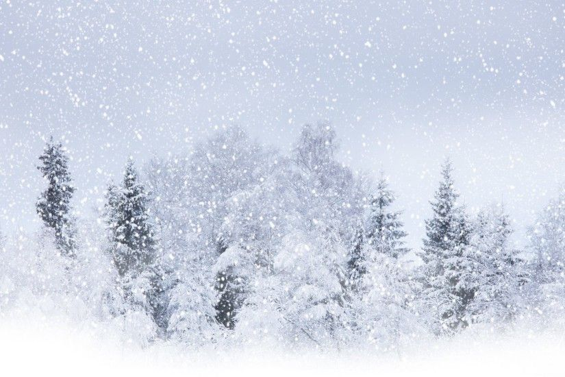 Winter Season Tree Snow Nature Free Themed Desktop Wallpaper - 5616x3399