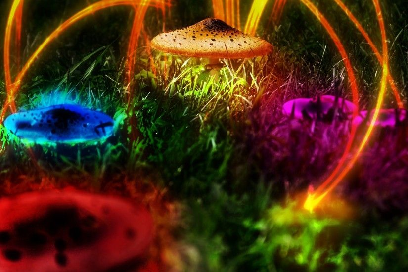 Psychedelic wallpapers psychedelic art wallpaper | Chainimage Psychedelic Mushroom  Wallpaper