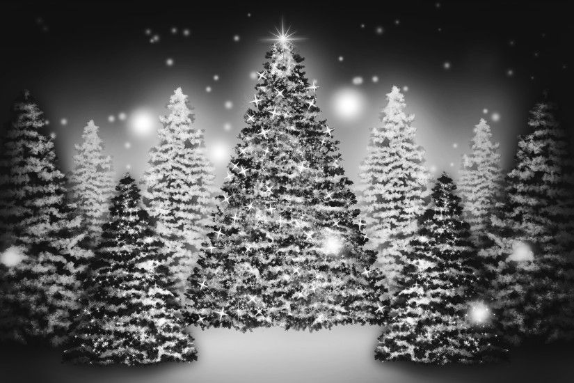 Beautiful Christmas Tree Wallpapers (24)