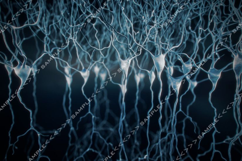Neurons stock images 3D Model | CGTrader.com
