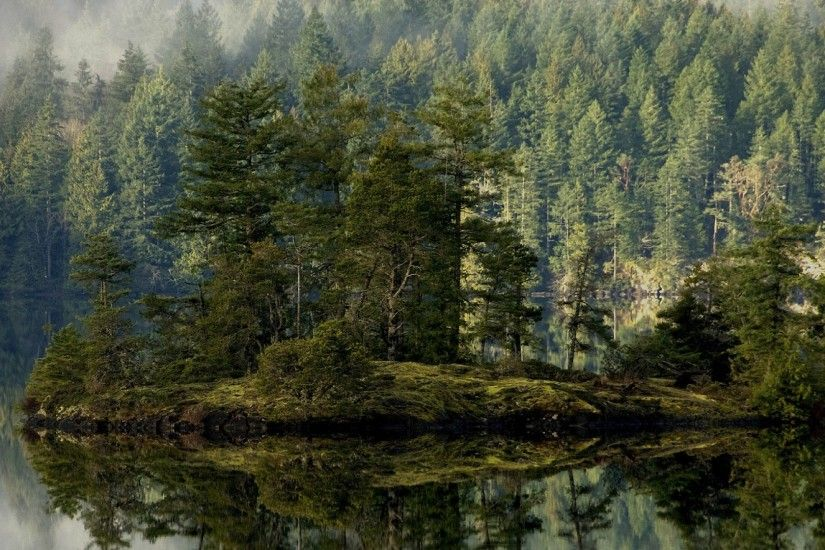 Preview wallpaper forest, lake, reflection, island, mist 2560x1080