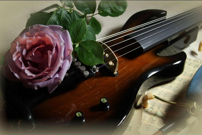 Violin Rose Wallpaper String With A