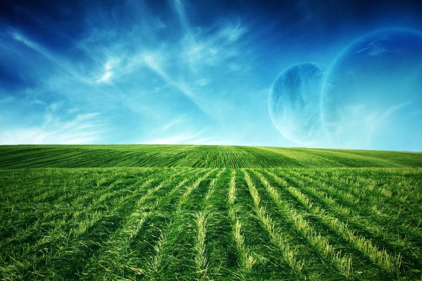 Green Field WideScreen Wallpaper